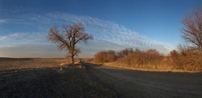 North of Rock Creek, Lancaster Co., NE, Dec. 1, 2009 by John Spence