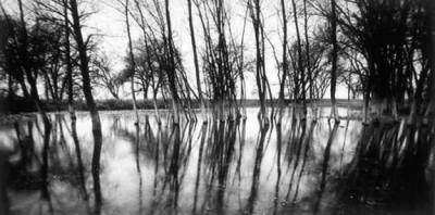 #114-61-6 Trees and Water, Hat Creek Ranch, Harrison, NE #2/3 by Larry Ferguson