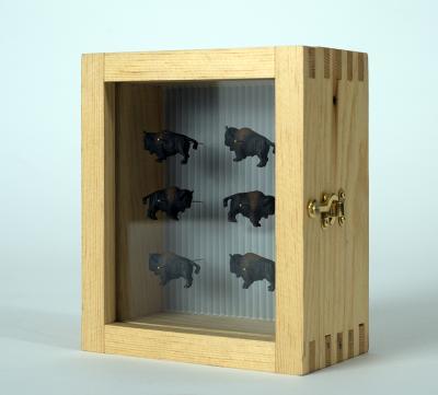 """""""Buffalo (small) Specimen Box"""" January 19, 2021 by John Spence"""