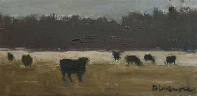 Cattle by Stephen Dinsmore