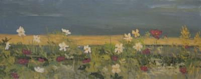Garden by Stephen Dinsmore