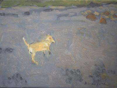 Bailey's Way by Stephen Dinsmore