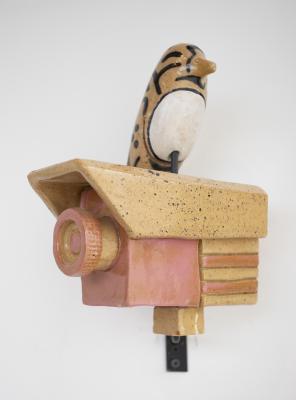 Bird on a Camera by Iggy Sumnik