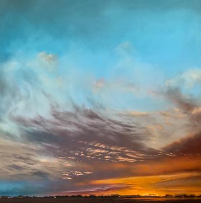 Feathering Skies by Jennifer Homan