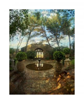 Mandelieu Garden by Kat Moser