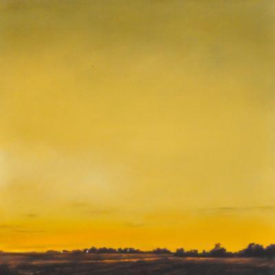 Awakening Skies by Jennifer Homan